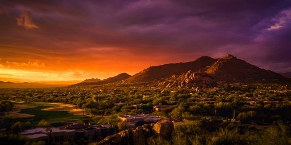 FLOCK Phoenix: March 2020